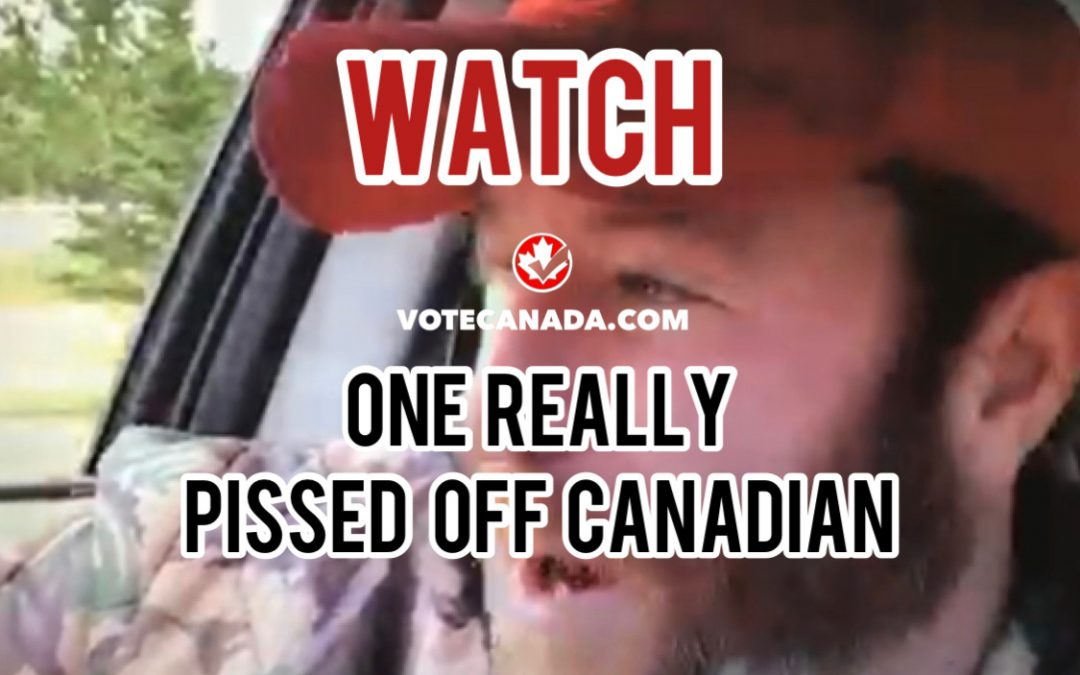 """WATCH: Canadian Absolutely Rages Over Maryam Monsef & Her """"OUR BROTHERS"""" Comment4 (4)"""